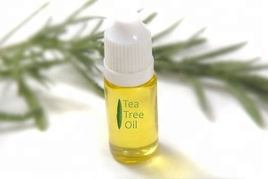 100% Natural Tea Tree essential Oil/Tea Tree Oil from BORG