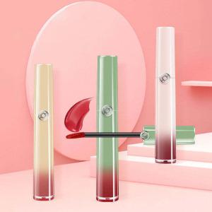 Lip gloss private label wholesale lip gloss custom lip gloss 5 unit set