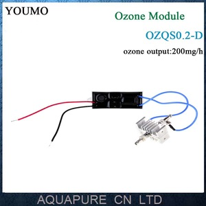 200mg/h made of 304 S.S electrode module for home spa ozone capsule