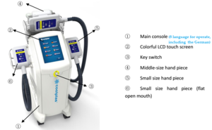 Newest Model Fat Freeze Machine 4 Cryo Handles Kryolipolyse Equipment