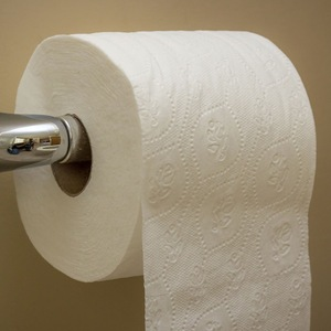 Factory direct Hygenic Soft Absorbent Flushable white 100% Virgin 2 ply Toilet Paper
