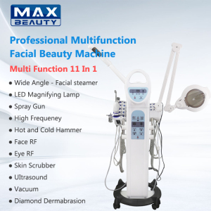 Salon Use 11 In 1 Facial Machine Professional Multifunctional Beauty Equipment Multi Function Facial Care Beauty Machine