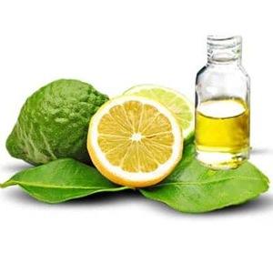 Bergamot Oil Citrus Bergamia - 100% Pure and Natural Therapeutic Grade Essential Oil