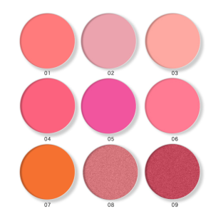 2021 Hot Selling Blush Oem No Logo Design Blush Can Be Freely Choosed With 4 Colors Of Blush Face Makeup Lovely Blush Palette