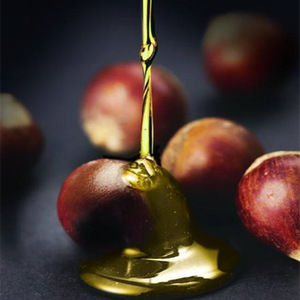 Cosmetic Grade Hazelnut Oil Press Cold Pressed Health Carrier Oil