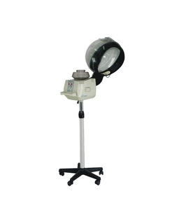 Beautystar 2015 Hot sale newest Standing style Professional hair steamer for salon