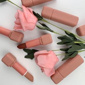 Custom private label lipstick oem solid lip stick cosmetics lipstick cruelty free lipsticks in your logo