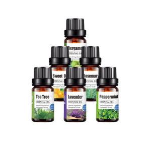 Top Quality 100% Pure 10 ml Diffuser Essential Oil Lavender Essential Oil
