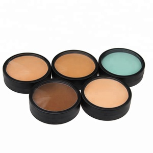 Long Lasting Wholesale Cream Private Label full coverage concealer