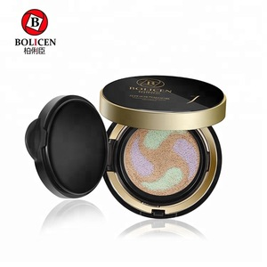 Professional air cushion dry powder cosmetics foundation make up 10 colors in stock
