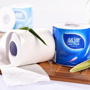 Custom Design WT-013 Sanitary Roll Toilet Paper