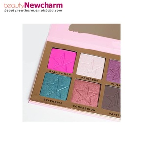 Professional cosmetic product popular star makeup 10 color eyeshadow palette