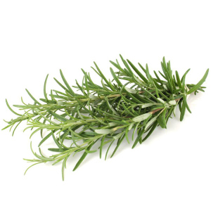 baby wash wholesale pure essential oil aromatherapy diffuser therapeutic grade rosemary oil