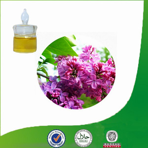 High Quality Eugenol Oil for Perfume Oil Manufacturing