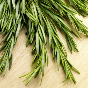 Factory Supply Rosemary Oil Bulk 100% Pure for Human Health