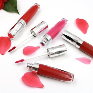OEM Cosmetics Lipstick Makeup Sets
