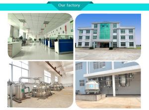 8007-11-2, bulk manufacturer wholesale Oregano Oil 70% Carvacrol