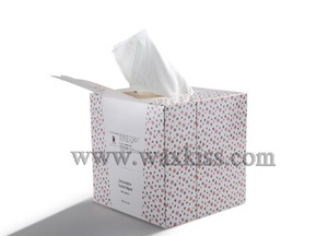 OEM/ODM Nonwoven cleansing biodegradable paper towel