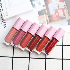 OEM/ODM Private Label Long Lasting Matte Lip gloss Makeup Cosmetics Lip Tint Liquid Lipstick Multicolor Lipgloss