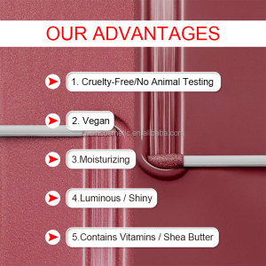 A315 Wholesale Cheap High Quality lipgloss oem private label cosmetics lip gloss