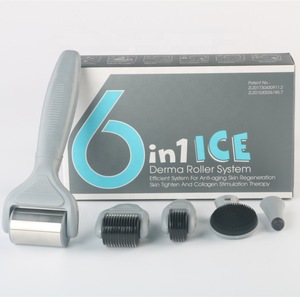 2019 Wrinkle Remover Feature 6 in 1 Microneedle Derma Rolling System with ice roller