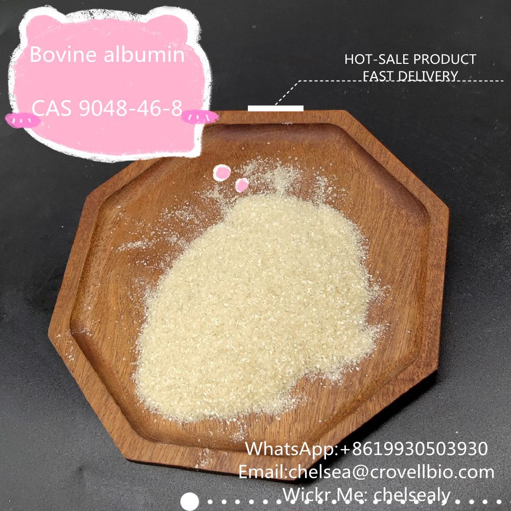 Factory Bovine albumin price CAS 9048-46-8 from China suppliers.WhatsApp:+8619930503930