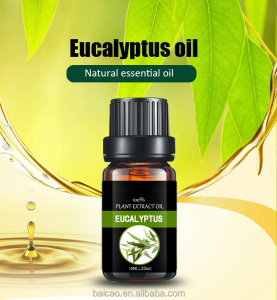 Factory wholesale natural essential oil Eucalyptus oil with 70%,80,98% eucalyptol