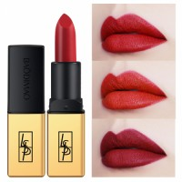 6 color matte lipstick long lasting makeup private label lipstick factory