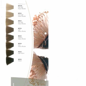 Professional color caralogue and hair color chart for Hair Color Cream/Hair Dye