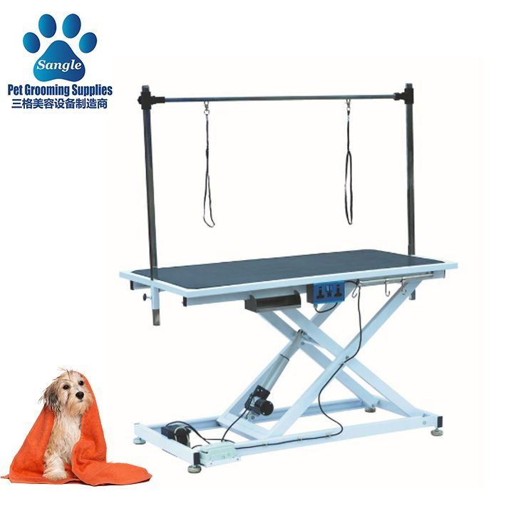 2020 Economic Electric Pet Grooming Table Lifting