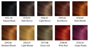 Fast Black Hair Shampoo Ammonia PPD Free Herbal Natural Hair Dye Foam