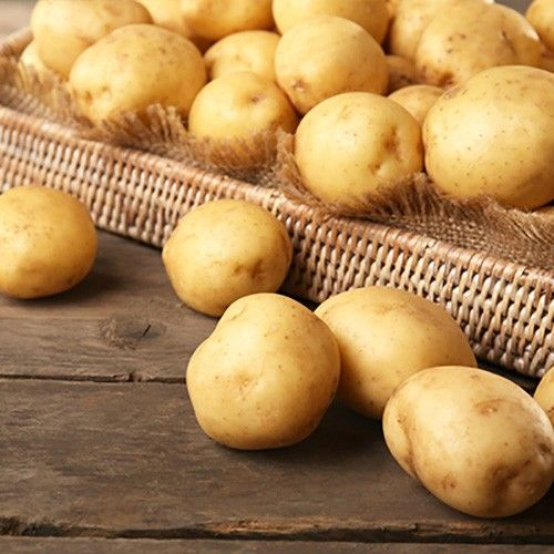 Chinese high quality potato
