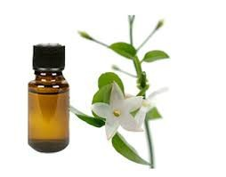 100% Pure & Natural Jasmine Essential Oil/Jasmine Essential Oil From BORG