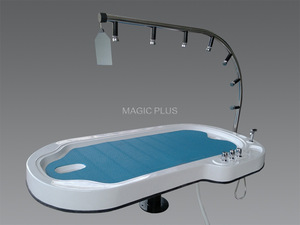 5010 Hot Sale Hydrotherapy  Water Aqua Massage Spa Bed Vicky Shower