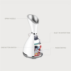 Beauty Products Handheld Nano Face Spray Electric Facial Steamer