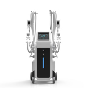 Top Quality Low Factory Price Beauty Salon Fat Freeze Slimming Cryotherapy Cryolipolysis Weight Loss Equipment with 4 Handles