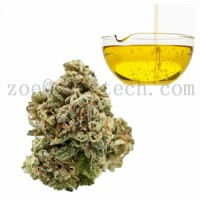 CBD isolate oil for health 13956-29-1