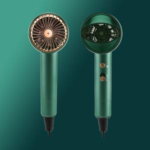 PRITECH Professional Salon Portable DC Moto Ionic Diffuser Electric Hair Dryer