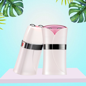 EMS Electric Microcurrent Wrinkle Remover Anti Aging Galvanic Device Face Skin Lifting Facial Massager