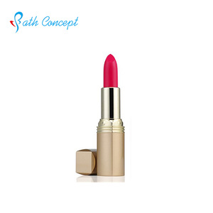 New type high quality cosmetic coloration lipstick
