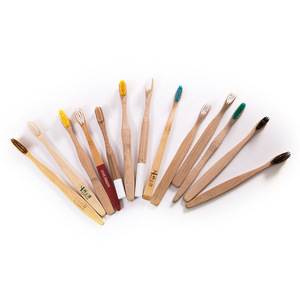 Provided Free Sample 100% Biodegradable Eco Bamboo Toothbrush