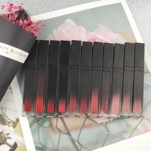 41 colors vegan black lipstick packaging makeup lipstick private label make your own brand liquid matte lipstick