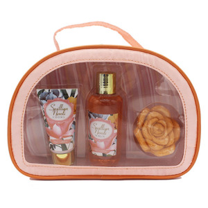 Assorted fragrance skin care products Cosmetic PVC Bag Bath Gift Set