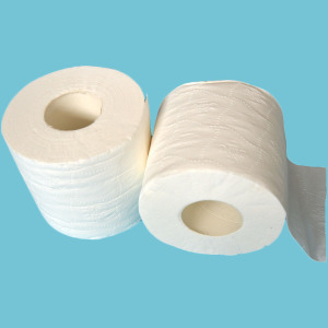 Flushable Ultra Soft Paper Roll Tissue Private Label Embossed Toilet Paper Made In China