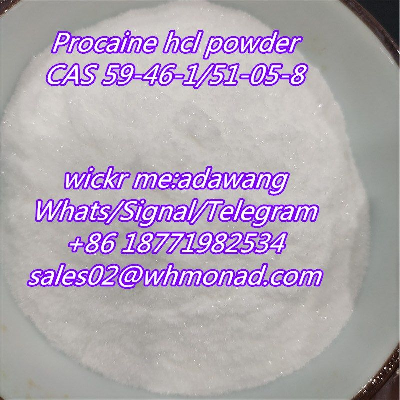 buy usa  online Procaine HCl Supplier CAS 51-05-8 for Local Anesthetic