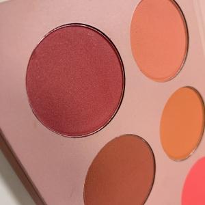 Blush palette high pigment blush palette private label makeup blush palette