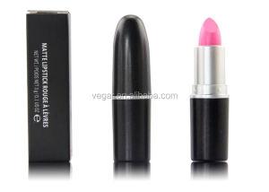 18 hour lipstick matte lipstick oem lipstick private label