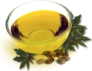 best processor of natural jojoba seed oil