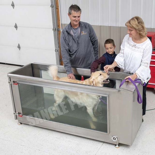 Canine Treadmill for water hydrotherapy,underwater treadmills for pets