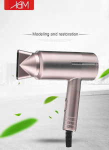 2021 New Design Household Personal Beauty Care Negative Ion Hair Dryer Blow Dryer Hair Dryer